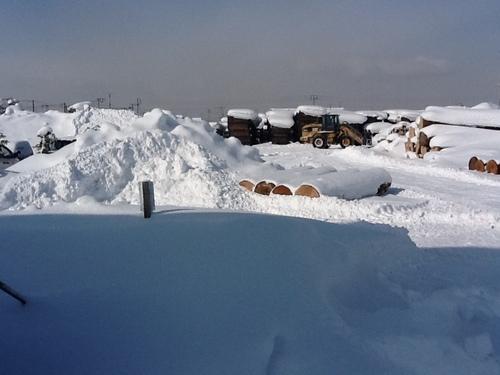 北海道、旭川の雪景色