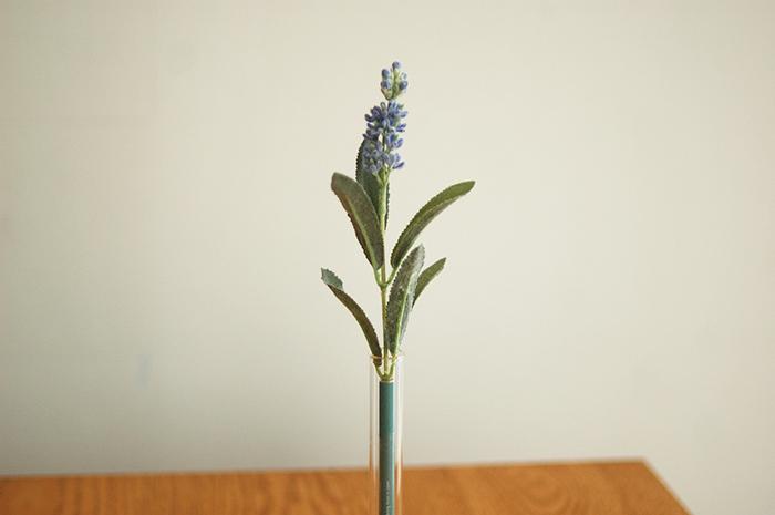Botanical pen / Lavender