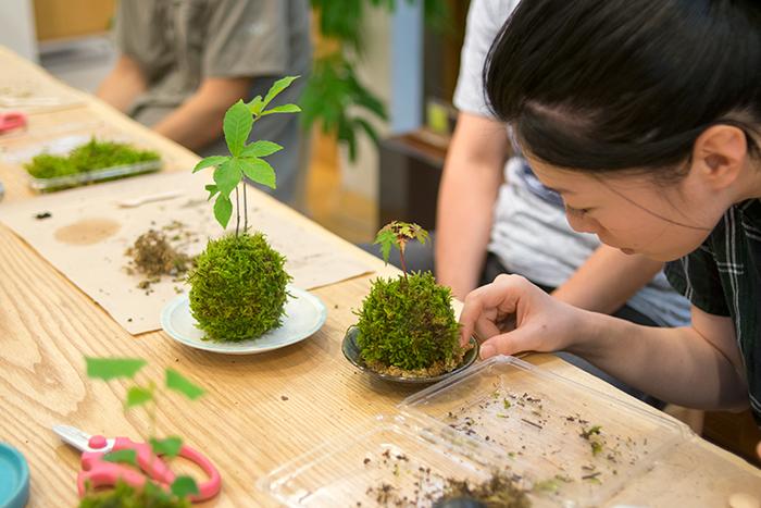 海保優希子さん、飯高幸作さんとWOODWORKによる苔玉づくりワークショップ
