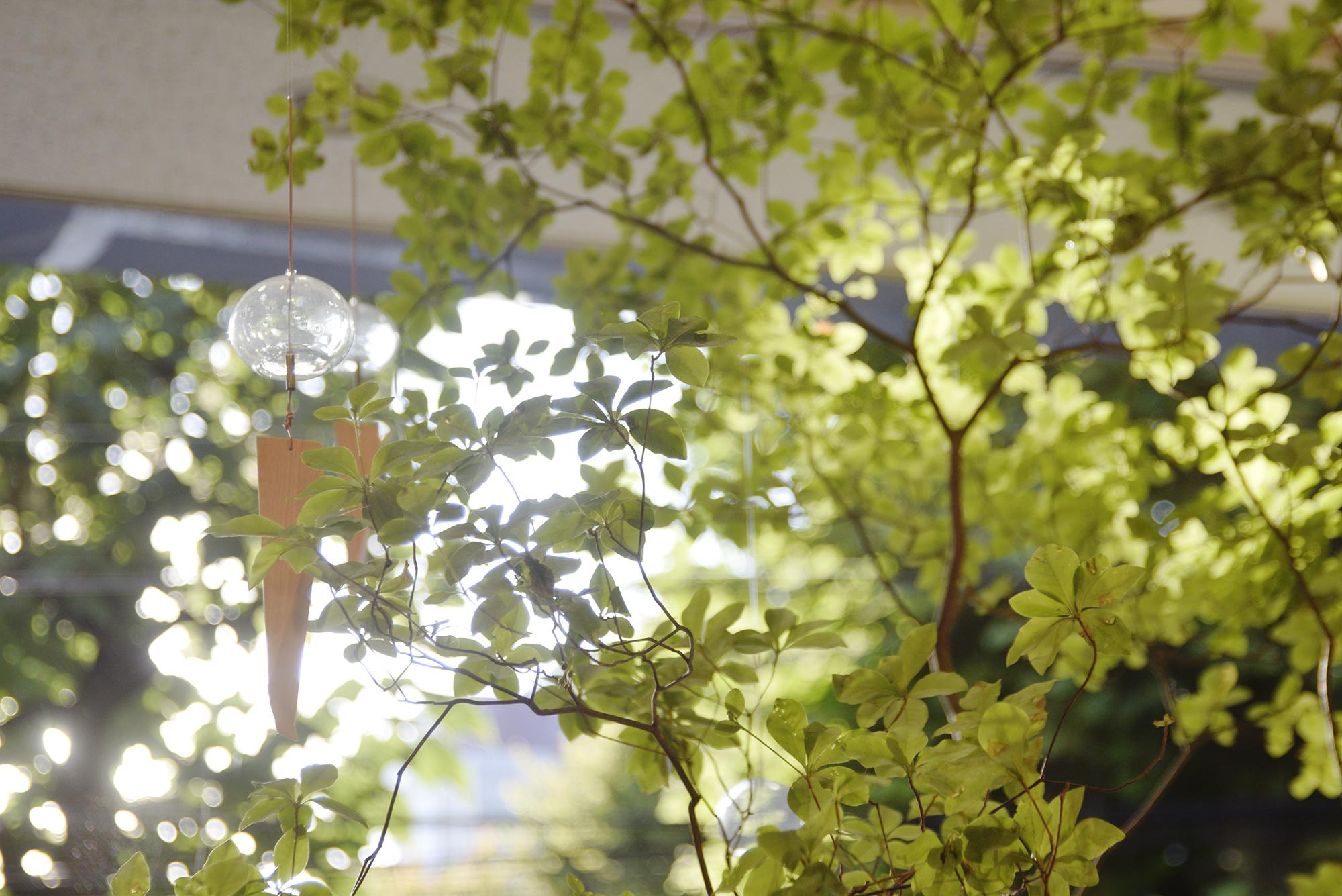 木の風鈴 涼木