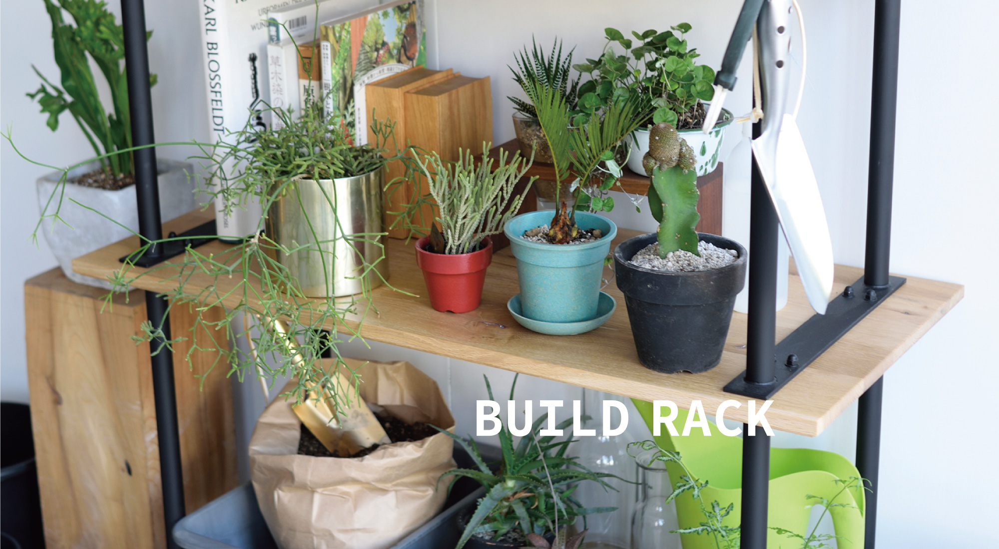 green好きのBuild Rack