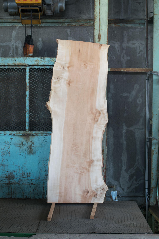 トチ(栃)一枚板天板