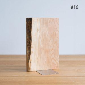 kittaki bookend #16